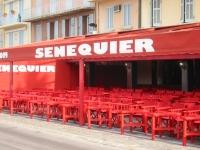 CAFE SENEQUIER SAINT TROPEZ